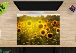 Schreibtischunterlage Sonnenblumenfeld aus Vinyl