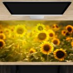 Schreibtischunterlage groß Sonnenblumenfeld aus Vinyl