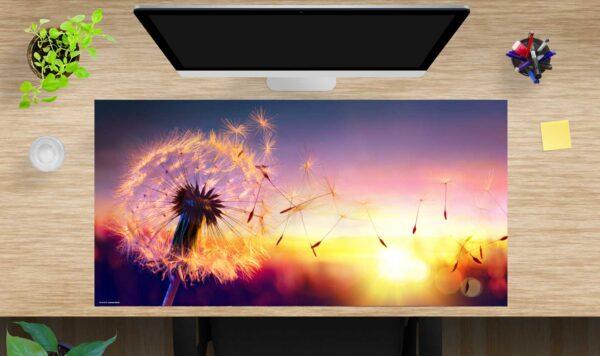 Schreibtischunterlage Pusteblume im Sonnenlicht aus Vinyl