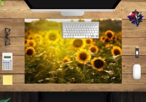 Schreibtischunterlage - Sonnenblumenfeld - aus Vinyl