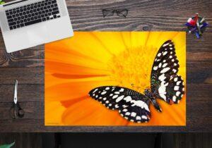 Schreibtischunterlage - Schwarz-weißer Schmetterling - aus Vinyl