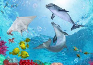 Schreibtischunterlage - Delfine unter Wasser - aus Vinyl